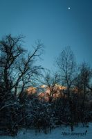 Moon Over Snow by mjohanson