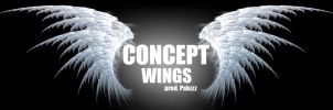 ConcepT - Wings  (( free download  )) by Pabzzz