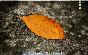 Mac Pro March Desktop by yc