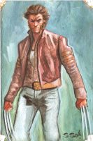 Wolverine Watercolor Sketch... by ssava