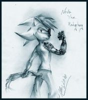 RQ - Nova the Hedgehog by AllesiaTheHedge
