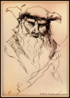 Radagast -ink sketch- by SarahMinishCap
