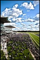 York Racecourse by DrkHrs