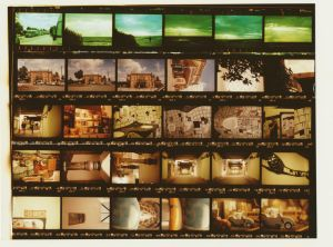 Contact Sheet by Ieatflowersforlunch