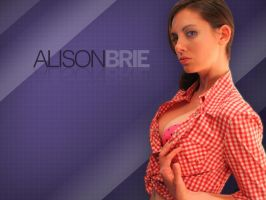 Alison Brie Wallpaper #2 [1024x768] by papatom
