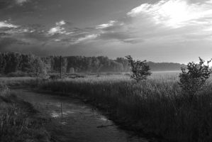 B and W 002 by Adeimantus