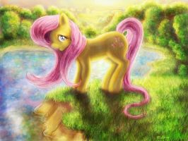 Fluttershy at the sunset by telimbo