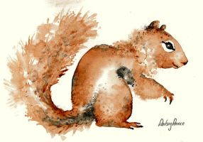 American Red Squirrel by LindsayPearce