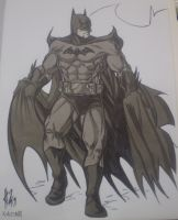 Batman from SDCC by tillman54