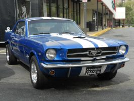 Ford Mustang 289 by rlkitterman
