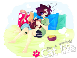 [Doodle] What a wonderful Cat life! by Nadi-Chan