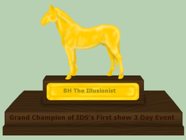 3 Day Event-IDS-Grand Champion by patchesofheaven74