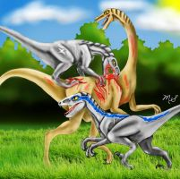 Star's Big Hunt *AT with DisneyWildeRaptor* by WhenBooksFly101