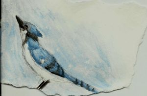 Birdy Christmas cards 2 by thatwillowkid