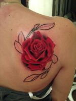 Realistic rose, in progress. by domnecktattoo