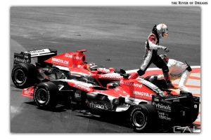 F1 Race: the River of Dreams by Calzinger