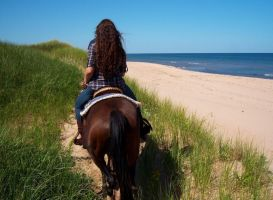 Riding the sand dunes by Photolover68