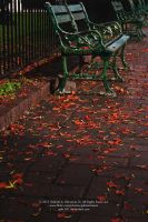 Bench by gab-181