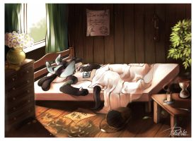 Late morning by Rejuch