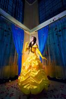 Beauty and the Beast: Belle by JoviClaire