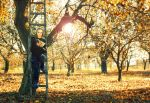 open the autumn-book by Megson