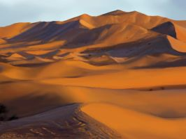 Photo Study 10 - Sahara desert by Zeon1309