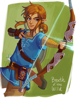 Breath of the Wild: Link by Carcoiatto