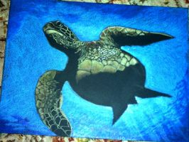 Sea Turtle by jdurden44