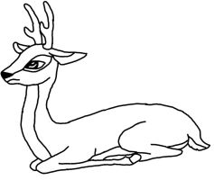Roe Deer Line Art Male by rtsbts