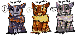 Fluffy creature adoptables .:2 and 3 still open:. by Nbianjwaca