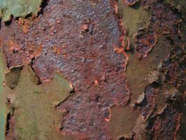 Rust I by H3PO-stock