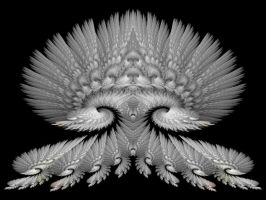 Snow Feathers by Thelma1