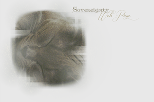 Sovereignty Webbie Layout -- Winter 2013 by leafeh22