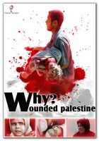 Why Wounded Palestine by mouaz