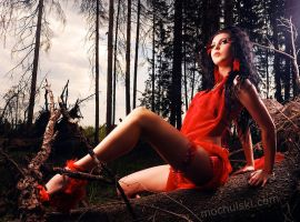 red forest fairy No3 by mochulski