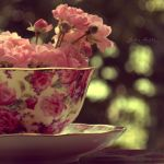 cup of nature. by Eunelia
