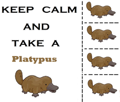 Keep Calm and Take a Platypus by StupidPoptart