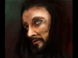 Thorin's reflexion by Elsouille