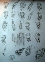 .Ear Study. by Lynneus