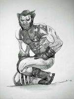 X Force Wolverine by cusT0M