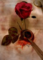 Edit Bloody Rose by darknesscl