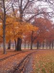 Autumn 1 by Sabbelbina