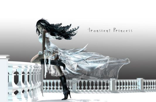 Transient Princess by montyoum