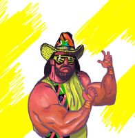 RIP Macho Man by jeff-aka-stray