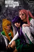 Highschool Of The Dead By Randy Rhoads by Candustark