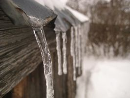 icicles on the shed by 8ankH