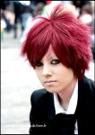 Gaara : 'House of wolves' by Hirako-f-w
