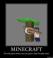 My Opinion on Minecraft by Tilax21