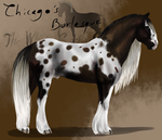 Chicago's Burlesque by The-White-Cottage