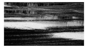 Flooding in the Fields by Arcanacaries